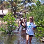 volunteer ecotravel marine conservation
