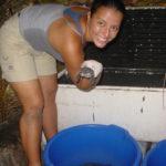 www.volunteereco.org Sea turtle volunteer