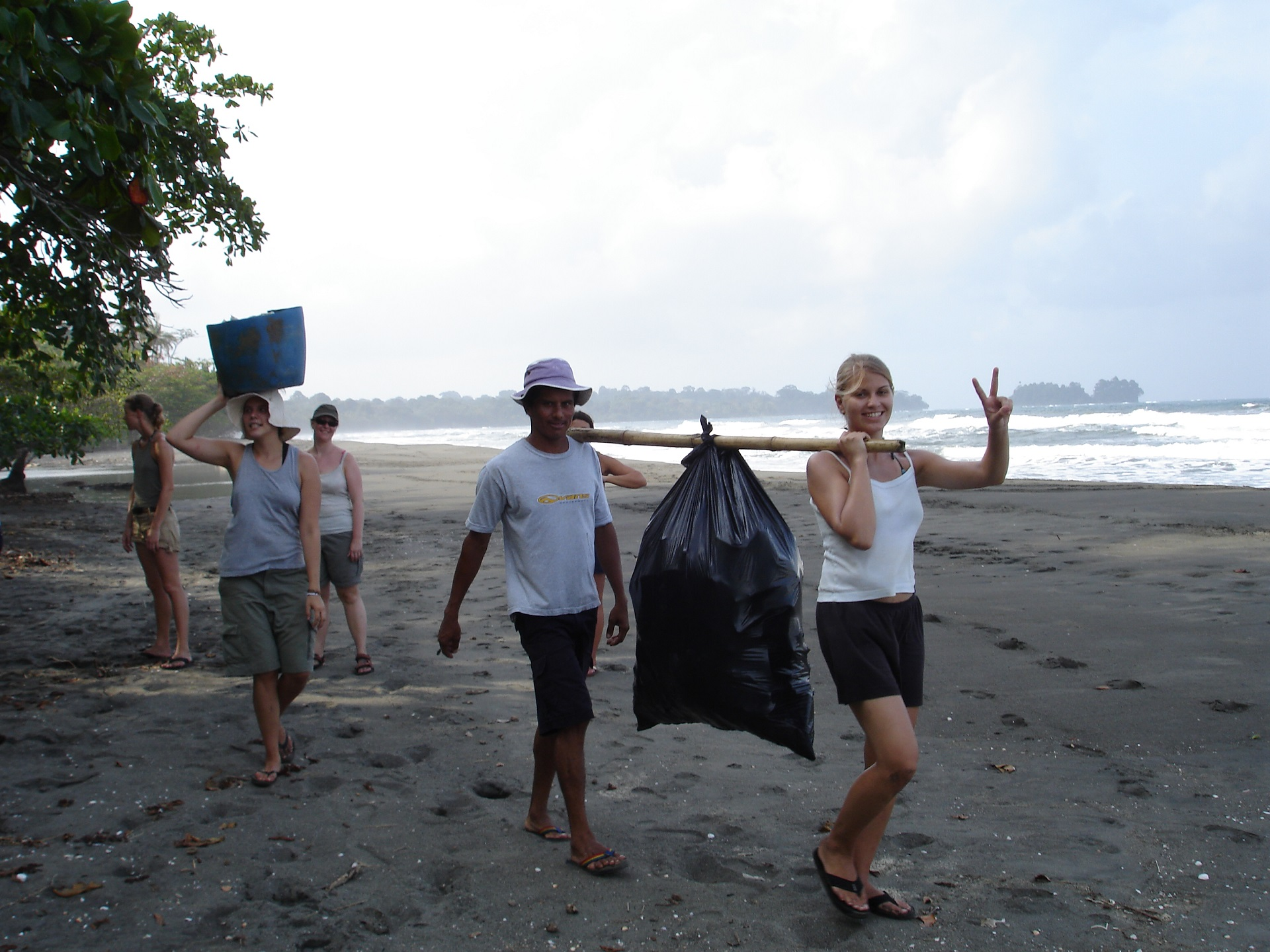 volunteereco.org volunteer for sea turtle conservation, collecting sea turtle egs