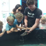 Volunteereco.org Volunteereco.org shark conservation volunteer, teaching children about sharks
