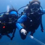 www.volunteereco.org Volunteer for Marine Mega fauna Indonesia- happy volunteers