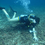 www.volunteereco.org Volunteer for Marine Conservation Indonesia ocean research