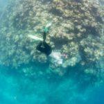 www.volunteereco.org Volunteer-for-a-Great-Barrier-Reef_Snorkeling enjoying while snorkeling