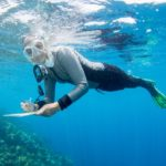 www.volunteereco.org Australia marine volunteer snorkelling