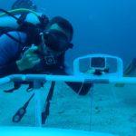 www.volunteereco.org Volunteer - dive for sharks, rays, turtles Sulawesi UW data collection