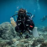 www.volunteereco.org Volunteer - dive for sharks, rays, turtles Sulawesi_plastic polution