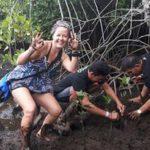 www.volunteereco.org Volunteer - dive for sharks, rays, turtles Sulawesi mangrove planting