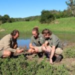 www.volunteereco.org volunteer-for-big-five-conservation-Team Leads