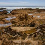 www.volunteereco.org volunteer-for-big-five-conservation beautiful coast for volunteer exploration